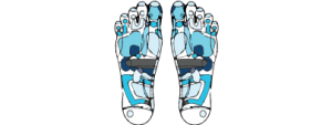 Reflexology icon